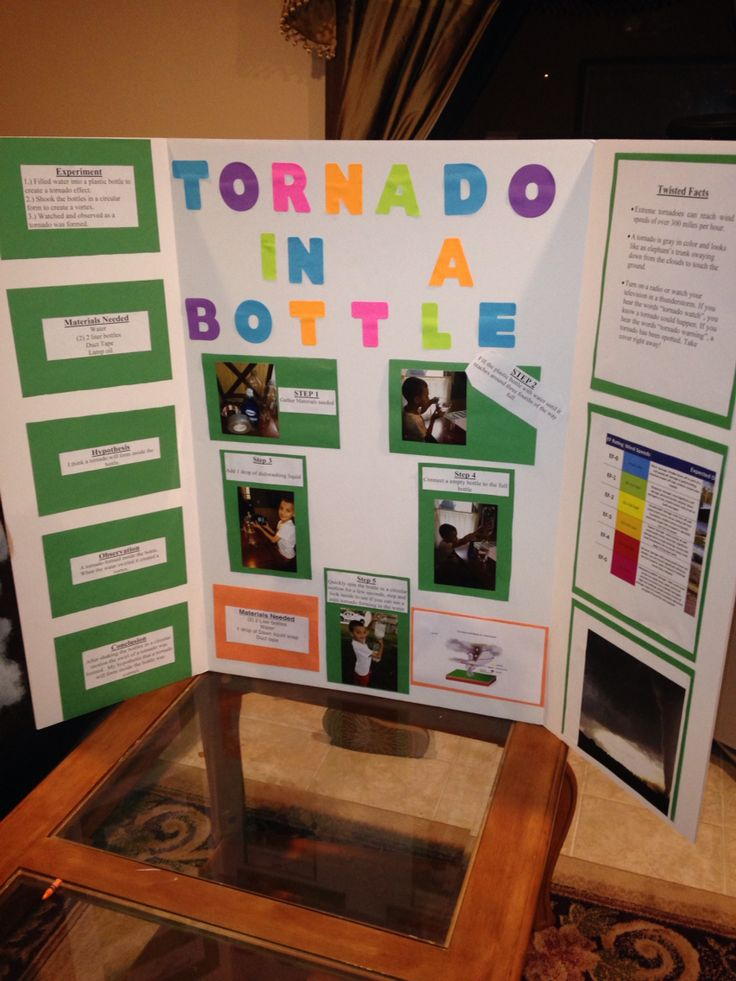 science fair project guide for students