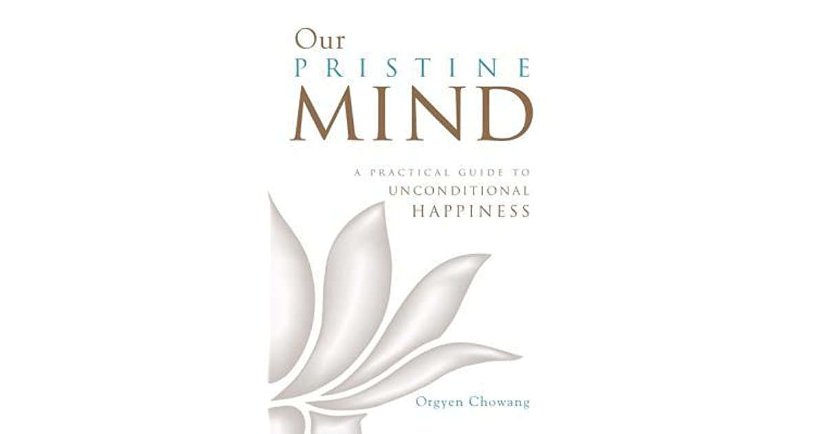 our pristine mind a practical guide to unconditional happiness