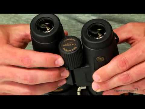 leupold bx 4 pro guide hd review