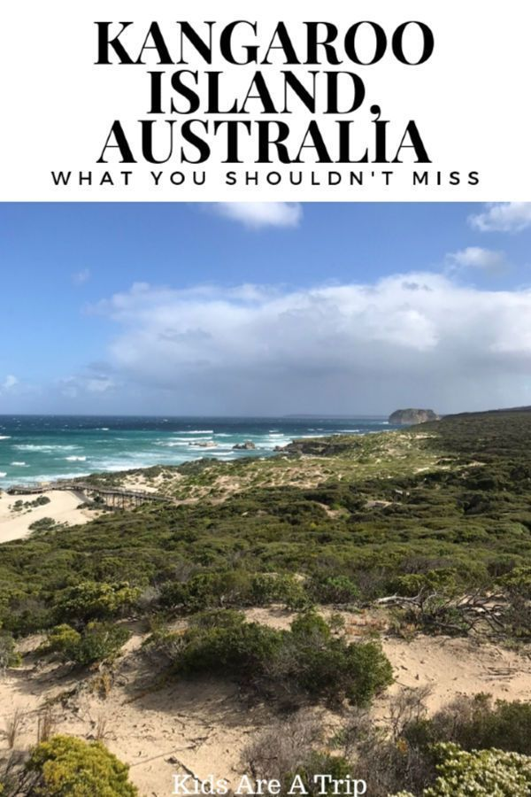 best guided tours of australia