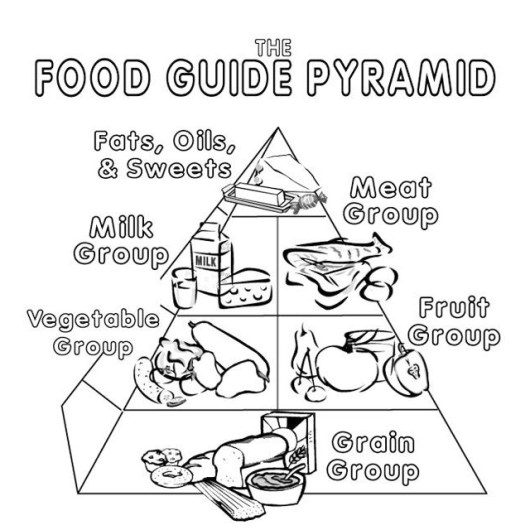 food guide pyramid for young children
