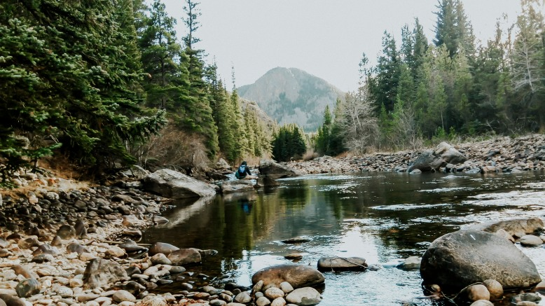 colorado river fly fishing guides